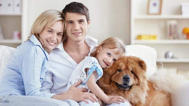 Wills & Trusts dog-young-family Direct Wills Birkdale
